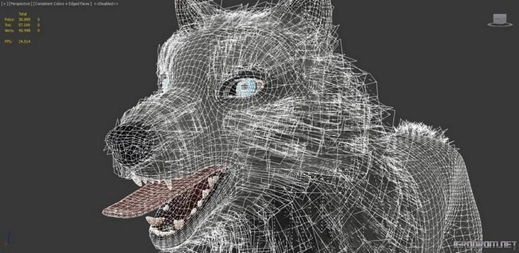 Создание изображения волка 1