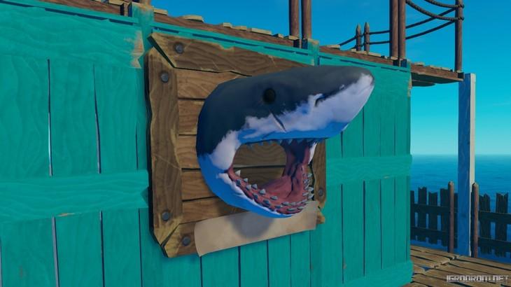 Акула-трофей и паруса - новинки