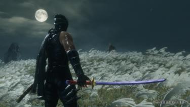 Рю из серии Ninja Gaiden появился в Sekiro: Shadows Die Twice